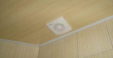 потолок и пвх